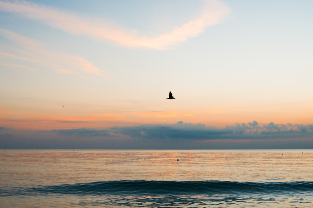 melissademata.com | Miami Beach Sunrise