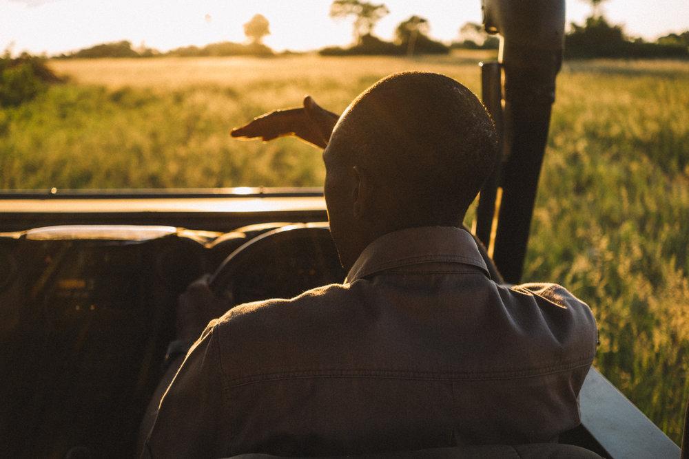 melissademata.com | Abu Camp Okavango Delta Botswana - Game Drive