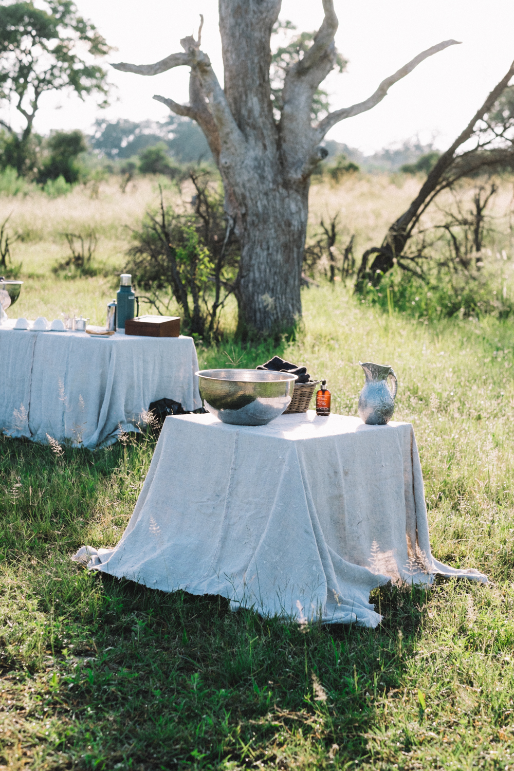 Melissa de Mata | Abu Camp Luxury Safari - Botswana