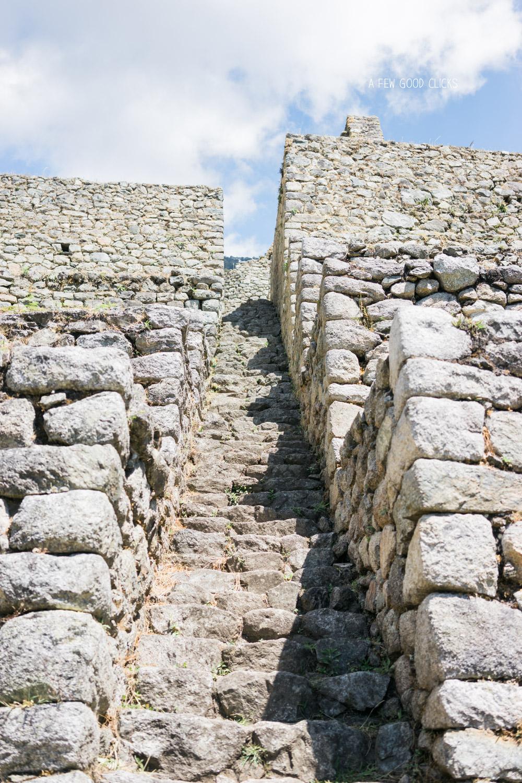Wiñay Wayna steps