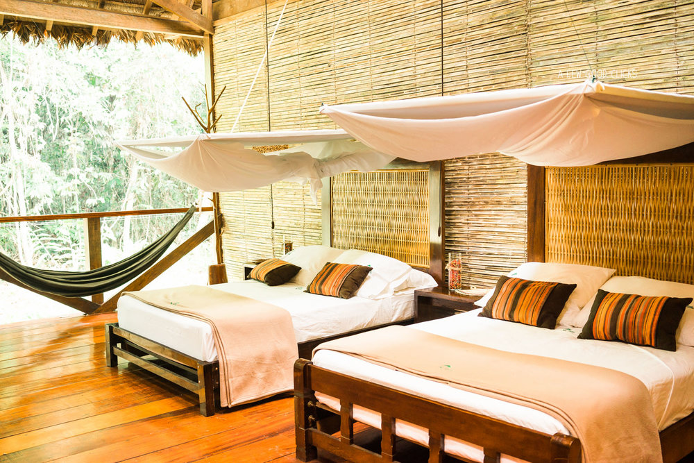Refugio Amazonas room opens in to the wilderness