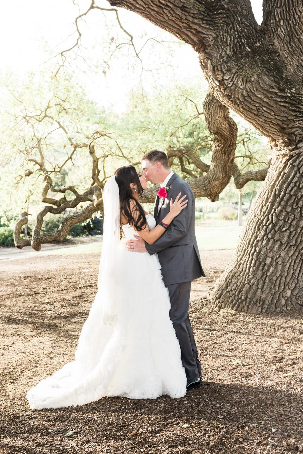Bride & Groom portraits under the famous tree.
