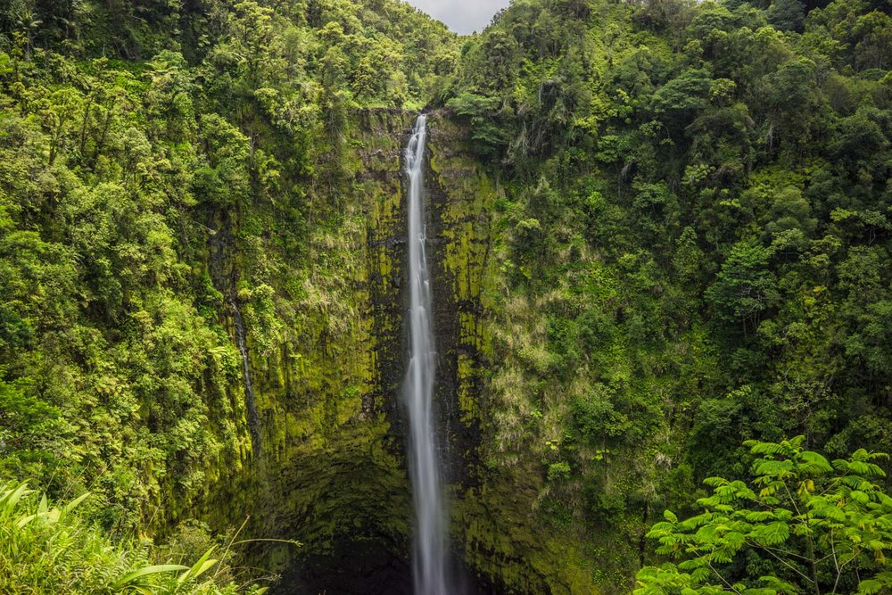 akaka-falls-bigisland-hawaii-landscape-photography-by-afewgoodclicks-net.jpg