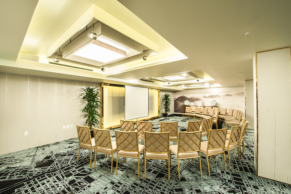 The meeting rooms in theatre style picture at Hotel Fusion.