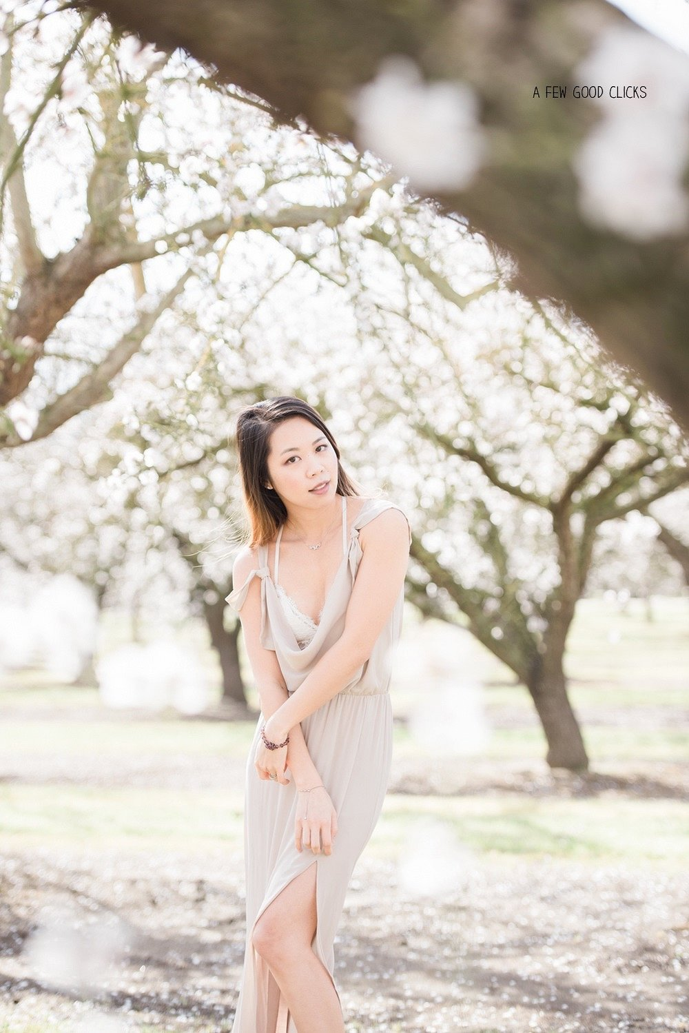 almond-blossom-lifestyle-portrait-photography-by-afewgoodclicks-net-24.jpg