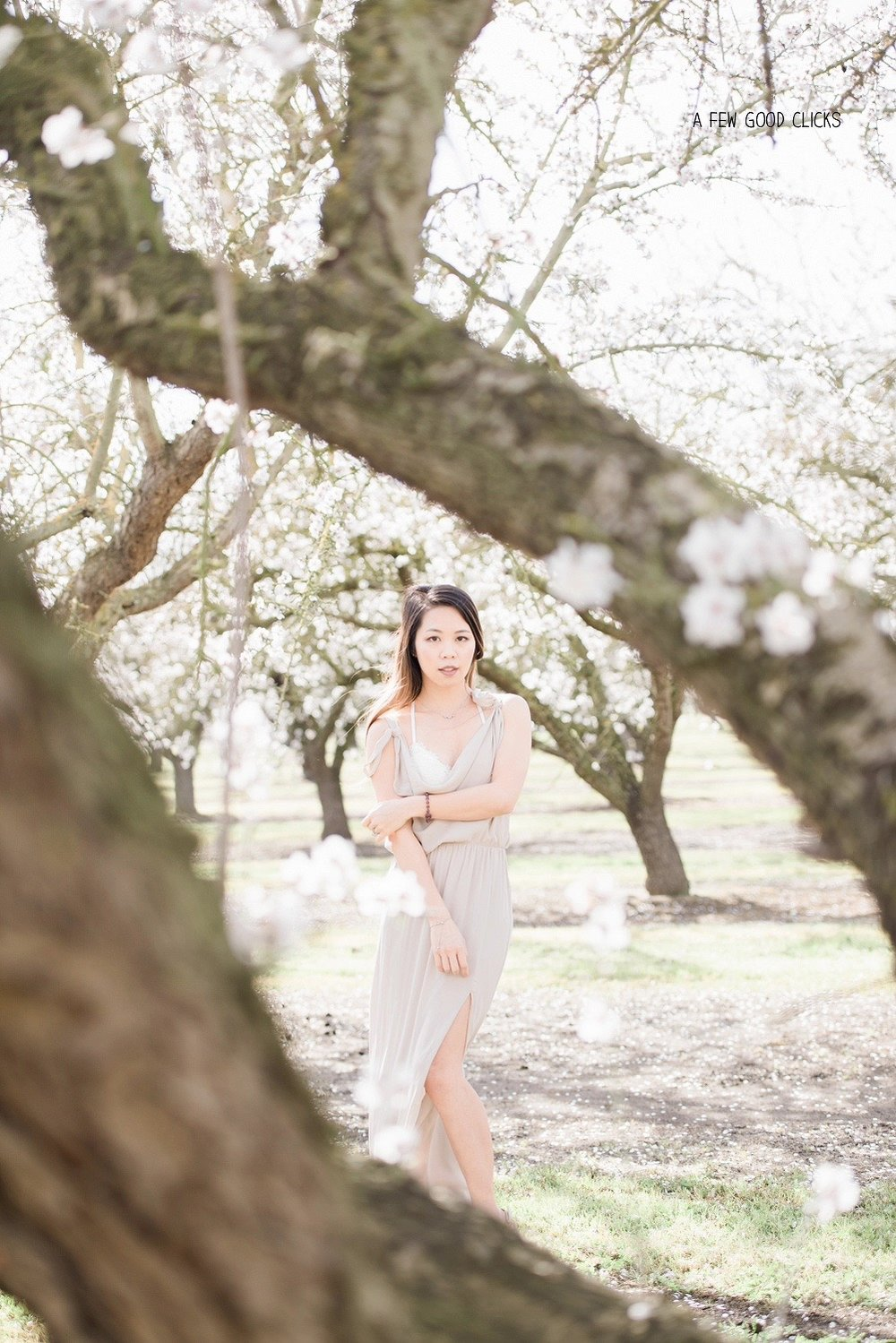 almond-blossom-lifestyle-portrait-photography-by-afewgoodclicks-net-25.jpg