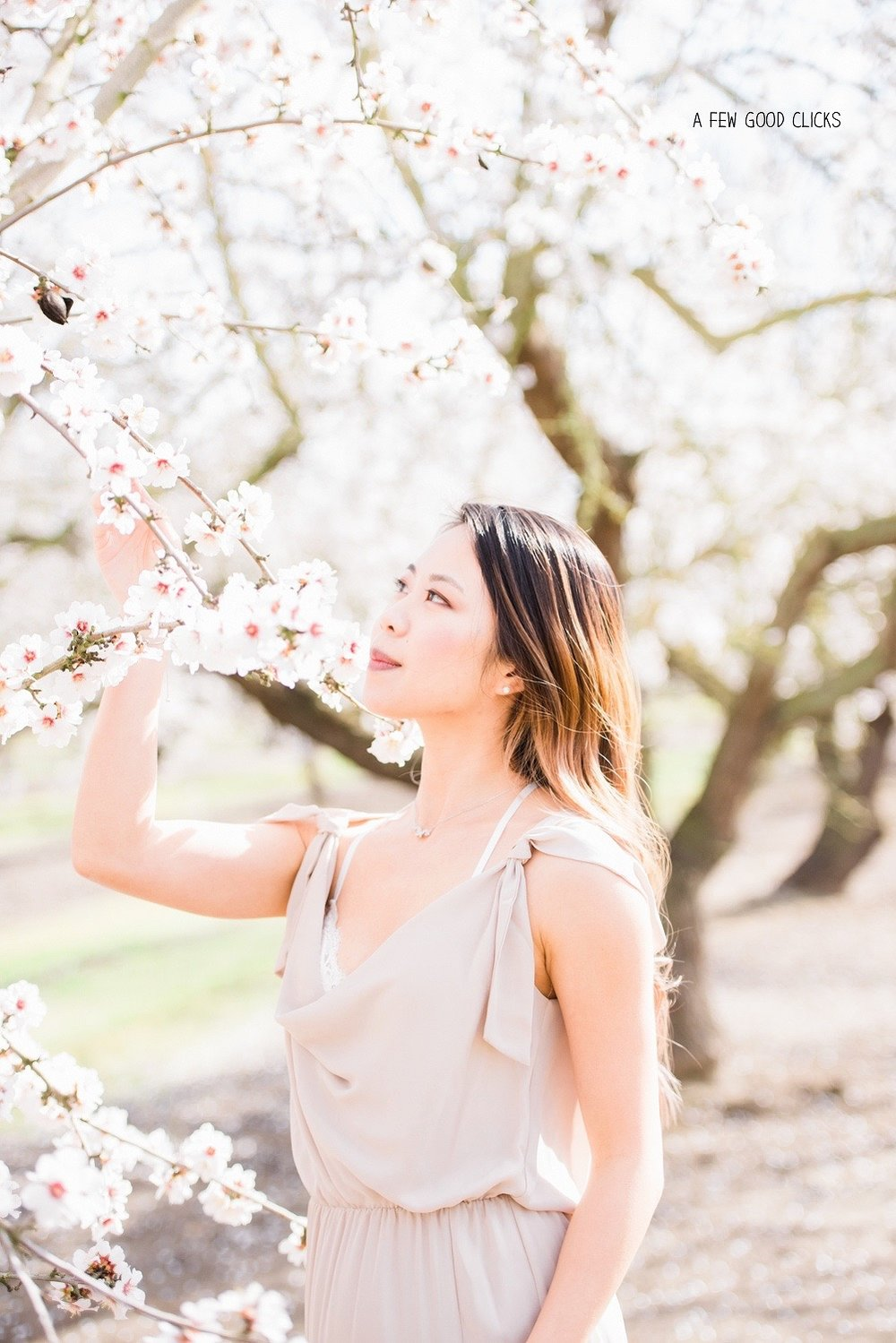 almond-blossom-lifestyle-portrait-photography-by-afewgoodclicks-net-32.jpg