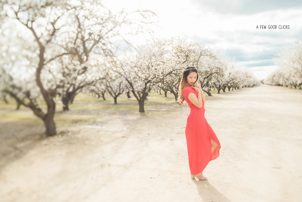 what-to-wear-almond-blossom-lifestyle-portrait-photography