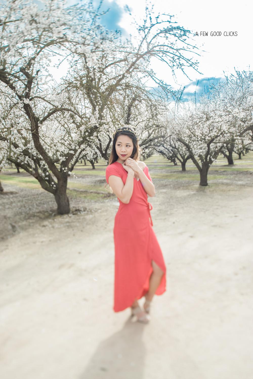 blossom-portraits-tiltshift-lens