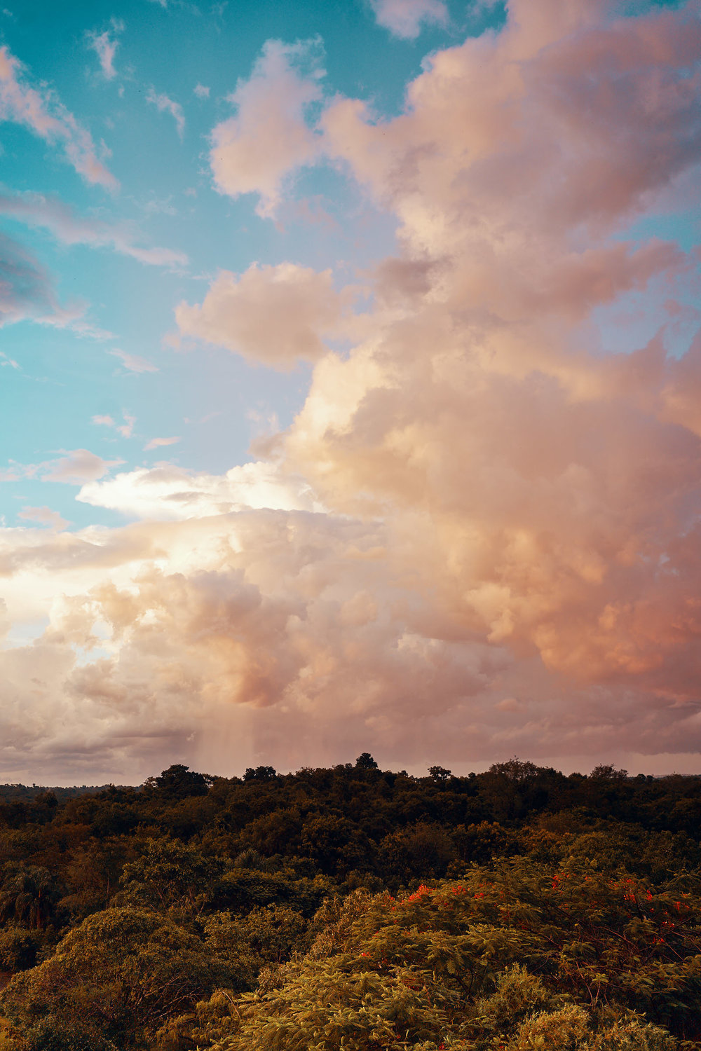 Nature creating riots of colours in the evening sky over Iguazu rainforest.