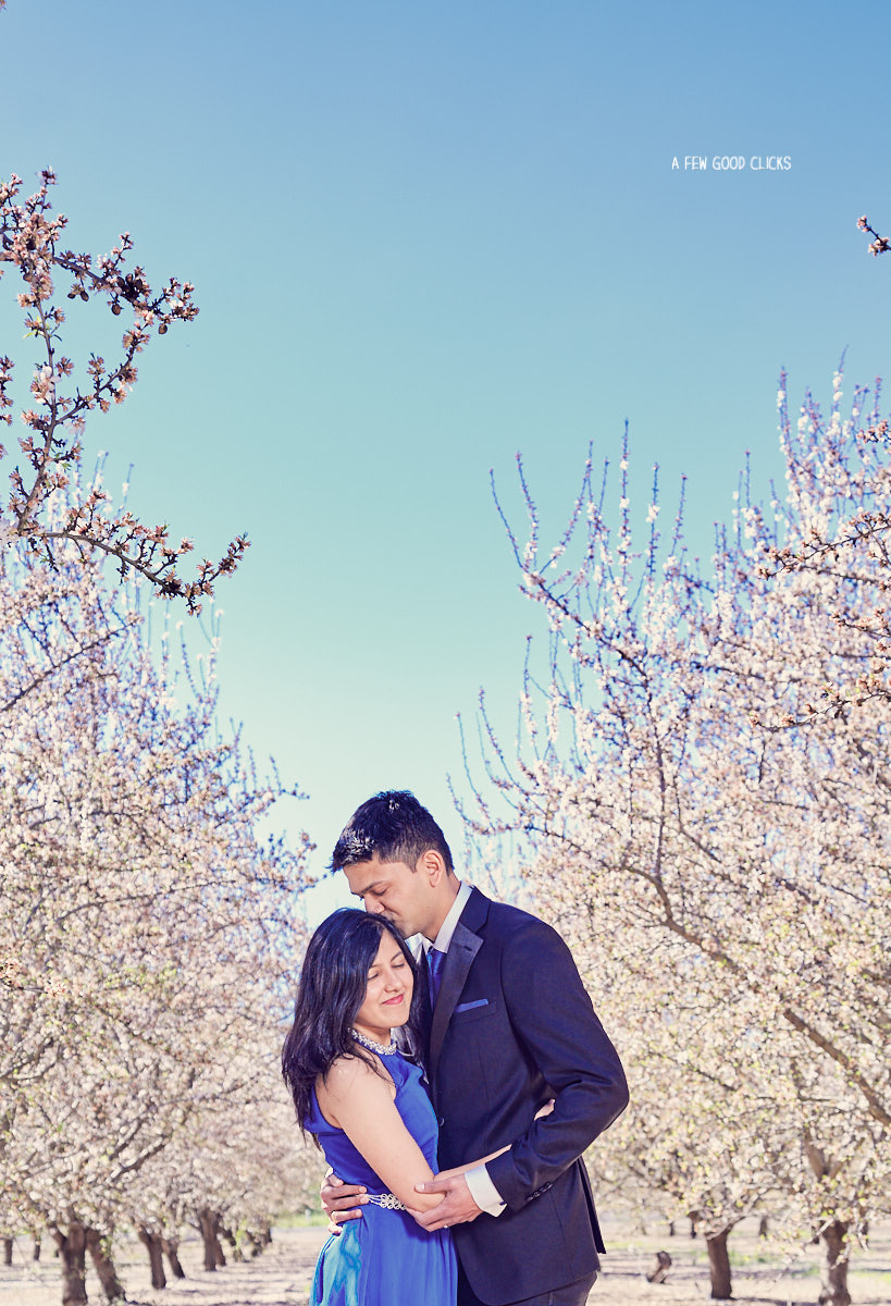 engagement-photoshoot-almond-farms-bay-area-by-afewgoodclicks