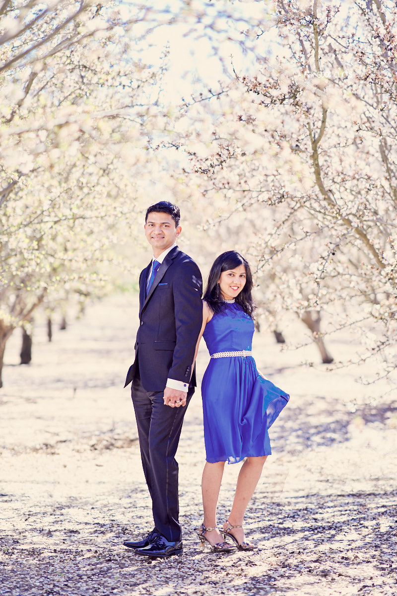 engagement-photoshoot-almond-farms-bay-area-by-afewgoodclicks 25.jpg