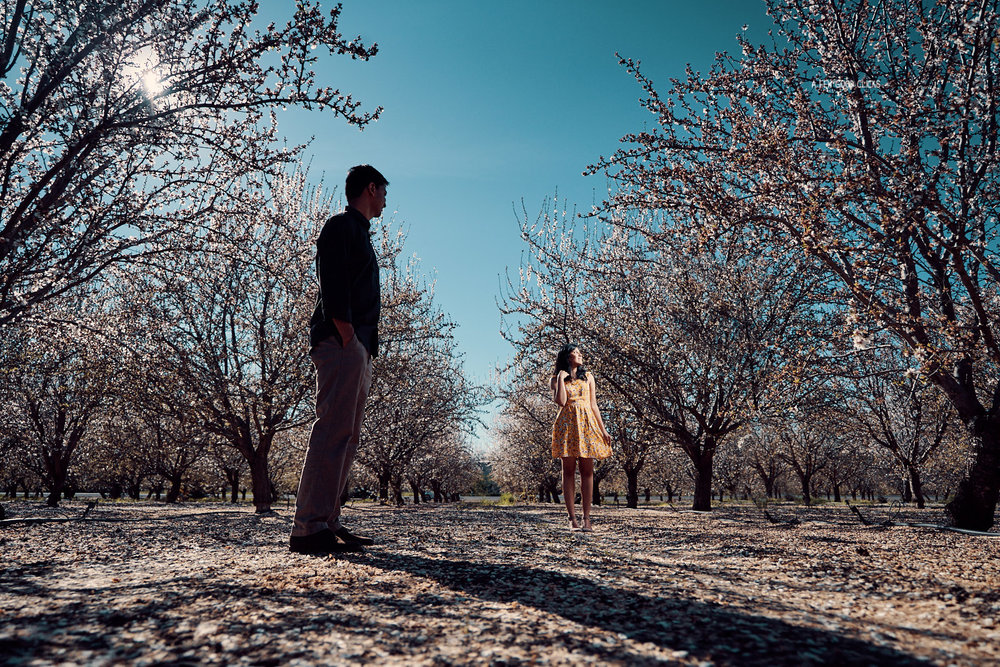 engagement-photoshoot-almond-farms-bay-area-by-afewgoodclicks 109.jpg