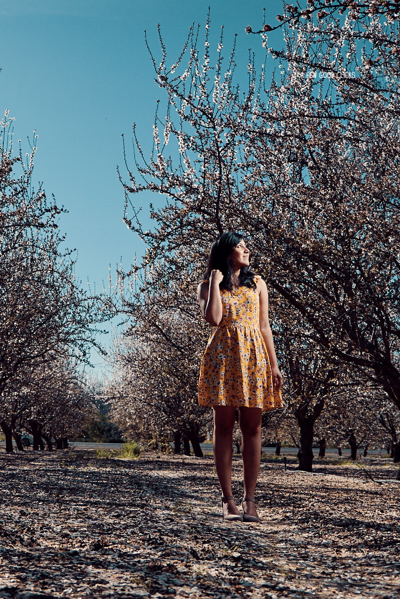 engagement-photoshoot-almond-farms-bay-area-by-afewgoodclicks 110.jpg