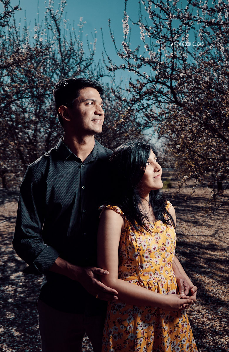 engagement-photoshoot-almond-farms-bay-area-by-afewgoodclicks 112.jpg