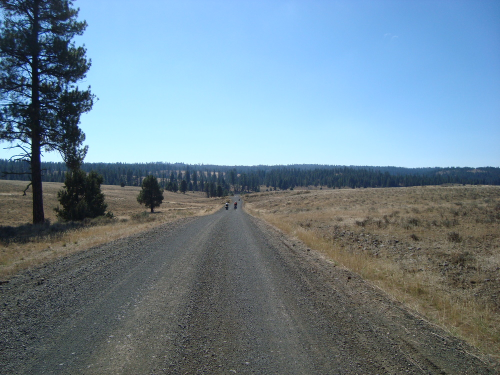 Ochoco National Forest