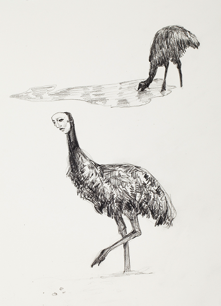 Emus (Unwara's web of death)