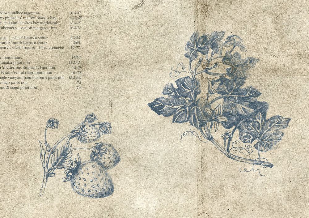 Botanical Illustration 3