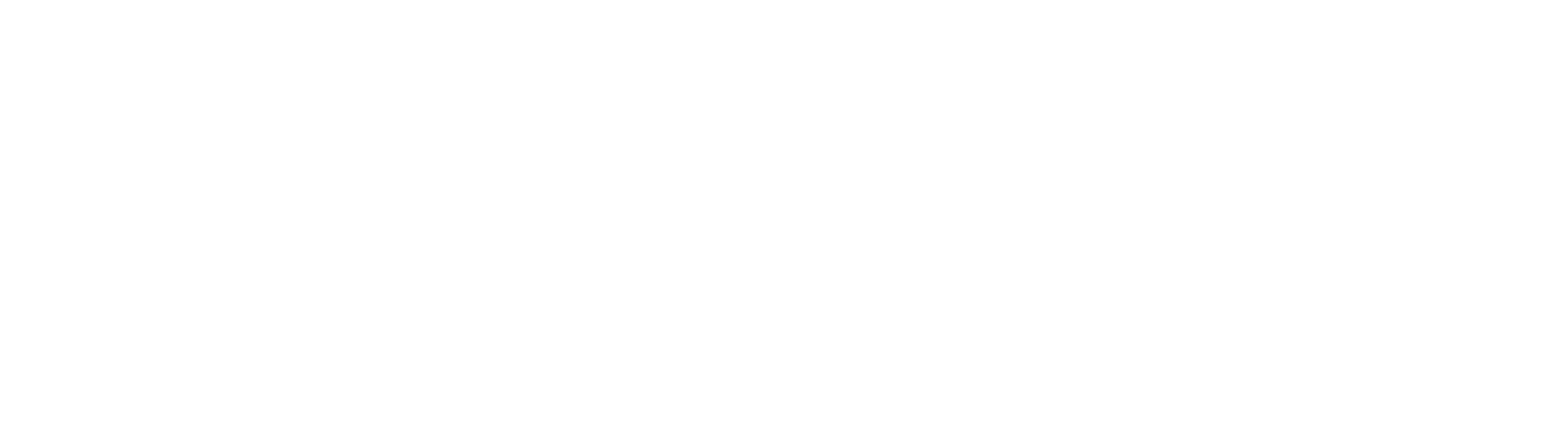 Tidewater Strategies - General Consulting | Digital Strategy | Political Consulting | Fundraising| Communications