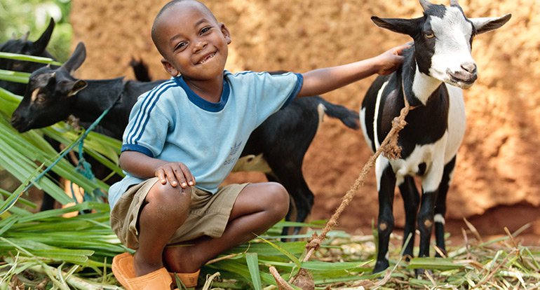Source: http://www.allthingsmamma.com/give-a-life-saving-gift-this-holiday-season-with-heifer-international/