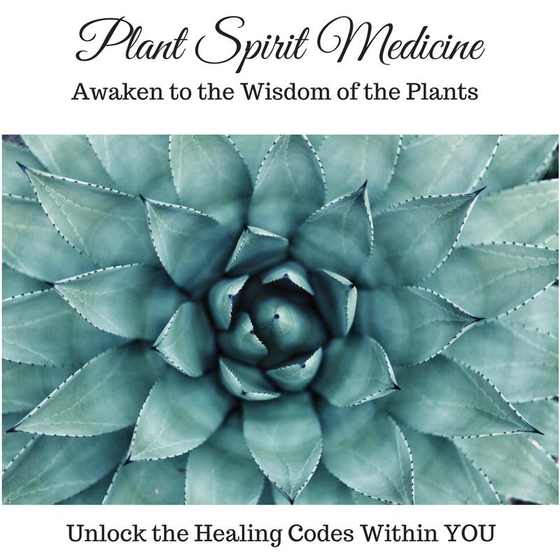 Plant Spirit Medicine.png