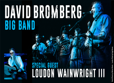 David Bromberg Music Without Borders