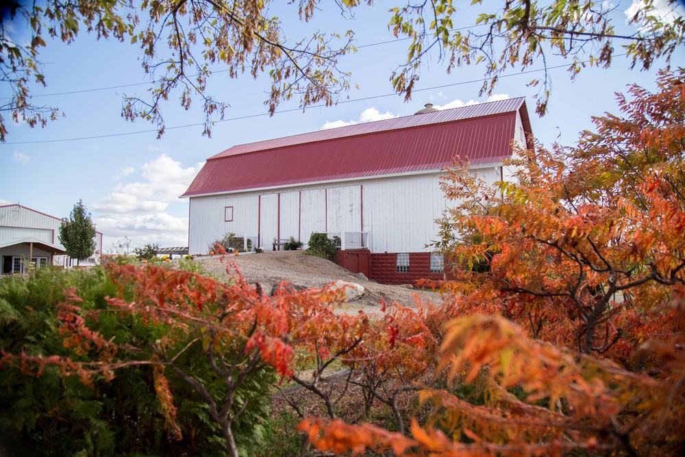 10_16-Barn_Fall_Colors_9997.jpg