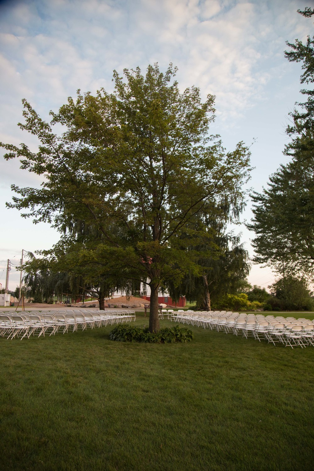 8_21-Birches_Ceremony_Setup_white_chairs_5873 2.jpg