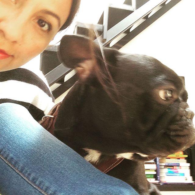 Un amigo del perro Chai 🐾 #doglover #happy #bulldogfrances #cute #dog