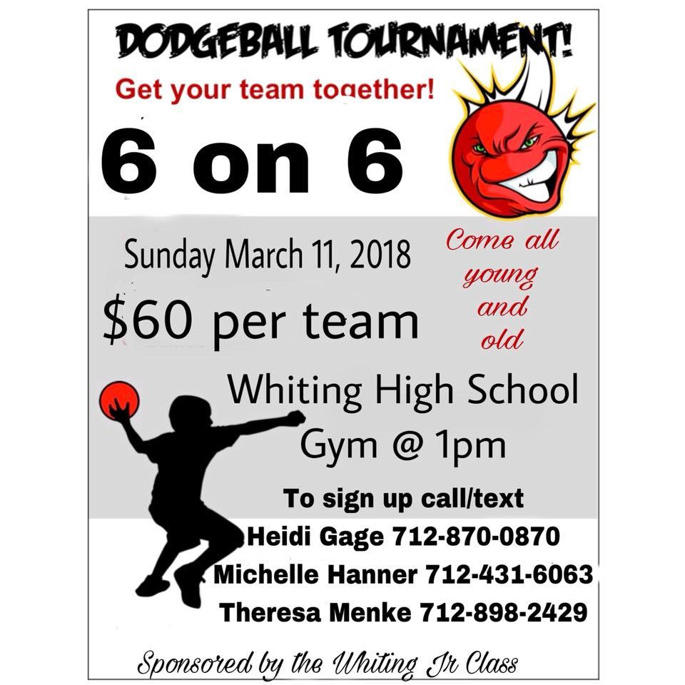 jr class dodgeball.jpg