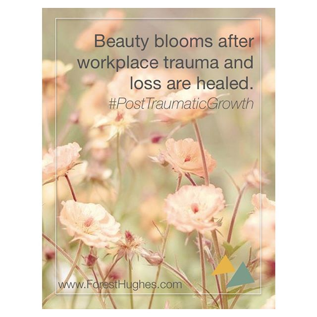 Post-Traumatic Growth is a thing - an optimistic, life-affirming, help make sense of bad things, thing. The catch? You must go into the dark hard spaces to heal and transform. This applies at-work too.✨ We can agree trauma exposure happens at work on a regular basis. My questions is - who is taking this seriously? We are. WE ARE! 🎈We visit organizations, government agencies, schools, hospitals, companies, firms and nonprofits bringing all the components needed to heal after workplace crisis and through work-induced #CompassionFatigue. ❤️ We take care of professionals the way they take care of others - with our whole heart! 💗 #ForestHughes #compassionfatigueawarecampaign #professional #professionals #lawyer #law #lawenforcement #lawfirm #legislator #newyork #teachersofinstagram #teacherlife #socialworkers #doctor #hospital #nurse #nurselife #nonprofit #emt #journalist #journalism #mediaprofessional #nyc #manhattan #bronx #queens #brooklyn #TarynHughes