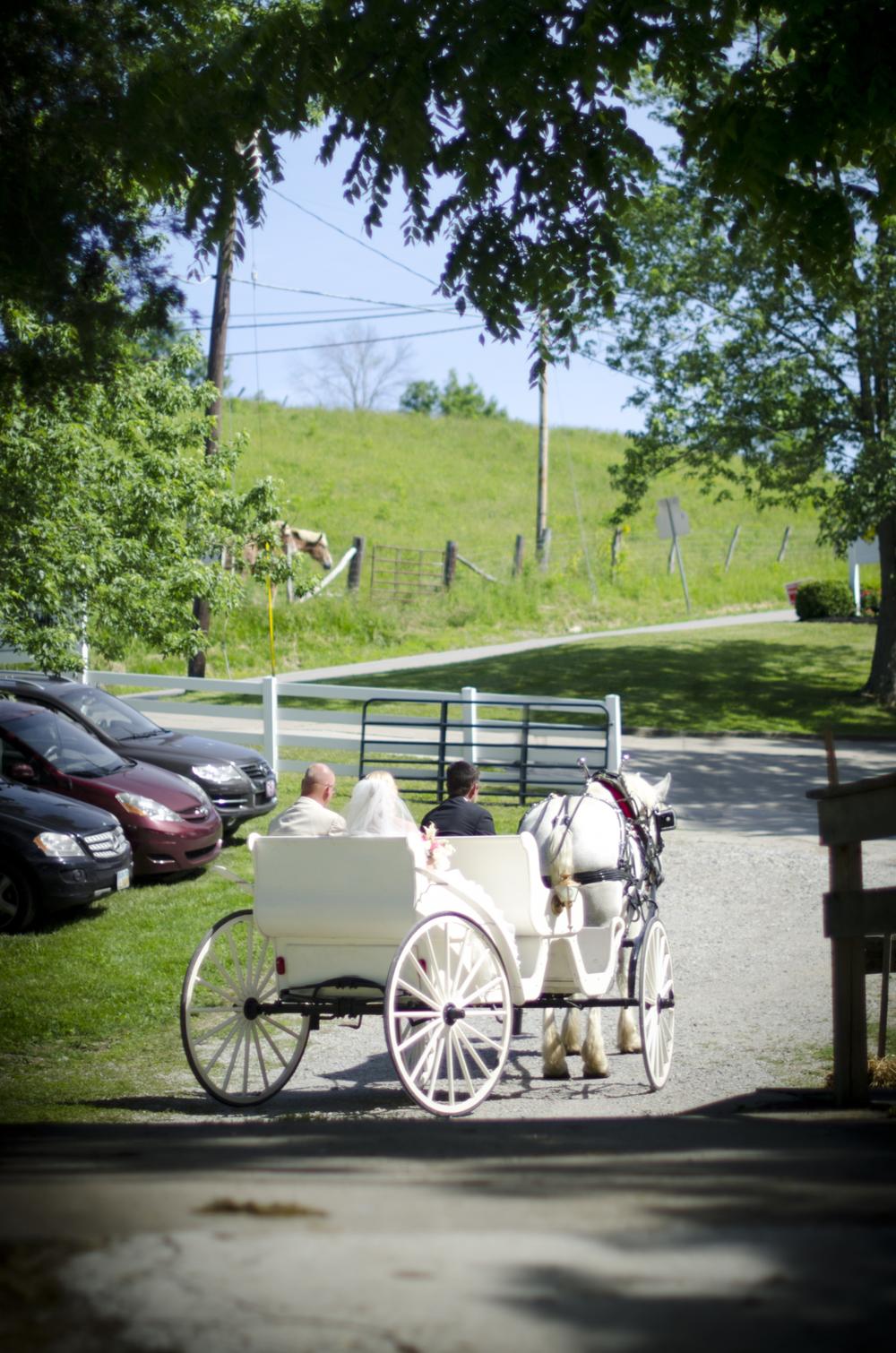 Neltner_Horse&Wagon