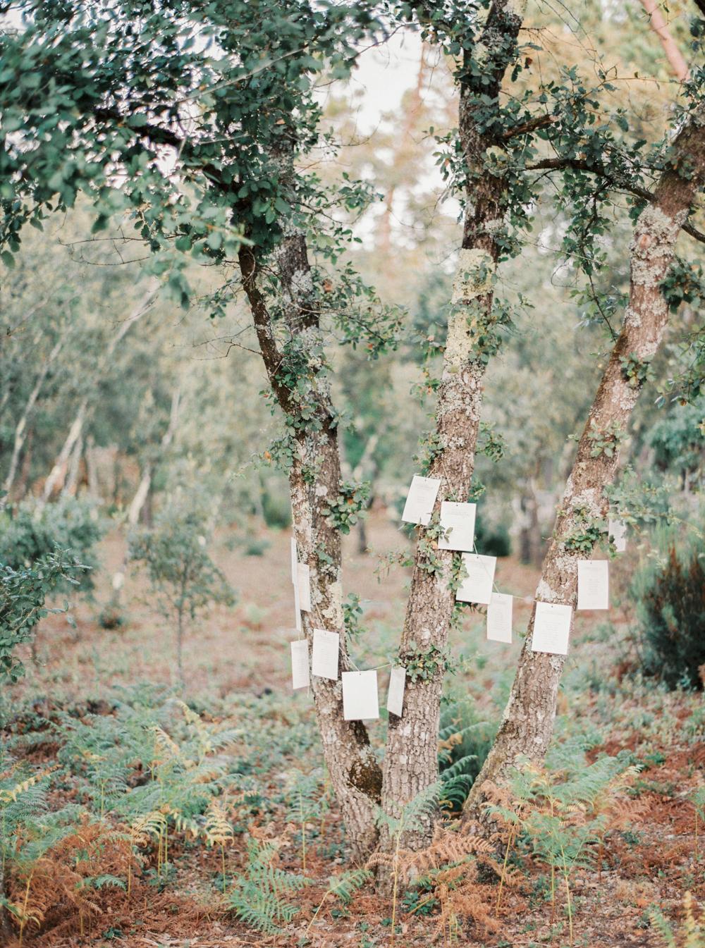 57 mariaraophotography_luzhouses_wedding-85.jpg