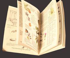 0fb5df3b95f910b98118ff69b8d77bab--survival-guide-manual.jpg