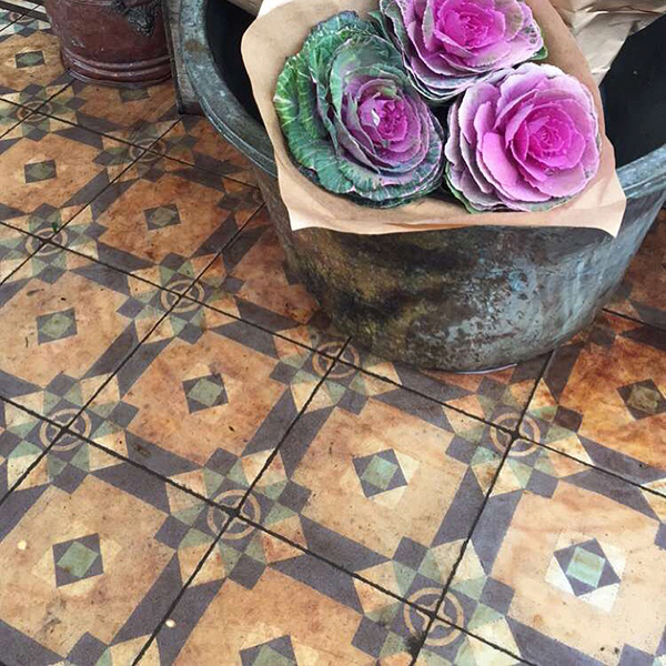 Brassica and patterned tiles in the flower shop.