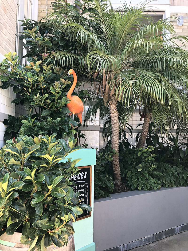 Flamingo at Watson's Bay Boutique Hotel