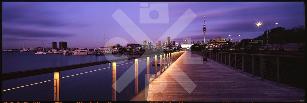 Auckland Boardwalk
