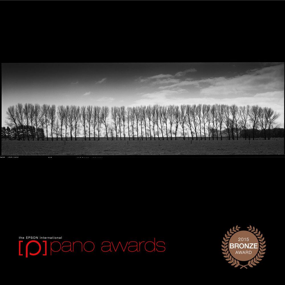 2015-Epson-Pano-Awards-Bronze-Social-451.jpg