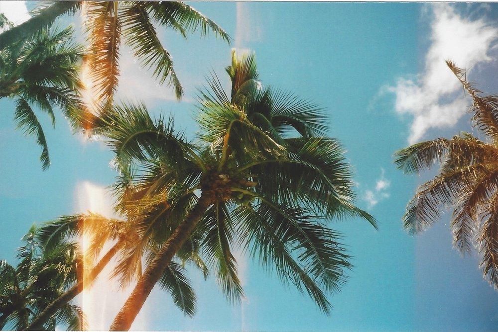 Maui-1.jpeg