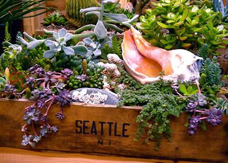 Lusher Life Garden Design Studiolusher Life Studio