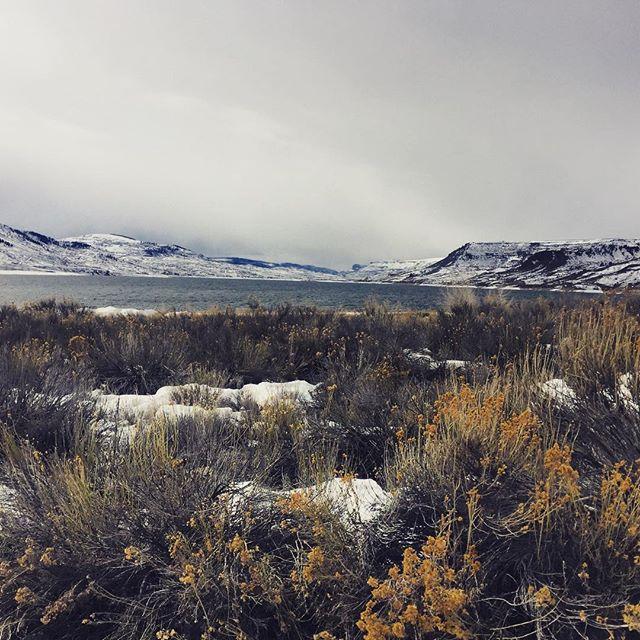 Ice fisherman's delight 🐟#bluemesareservoir