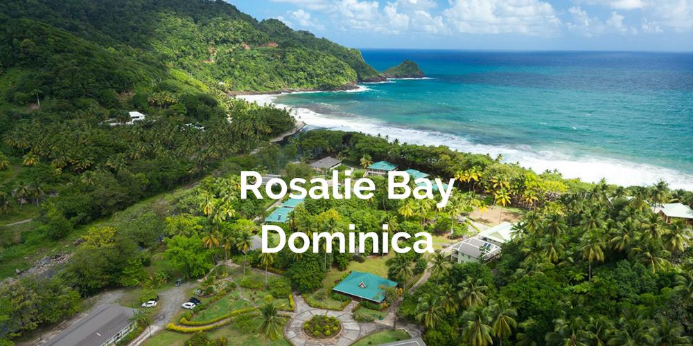 Rosalie Bay Banner.png