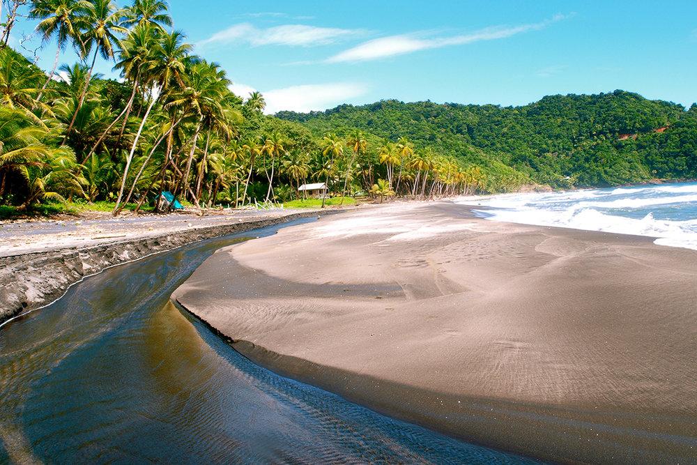 Rosalie Bay beach-kerr.jpg