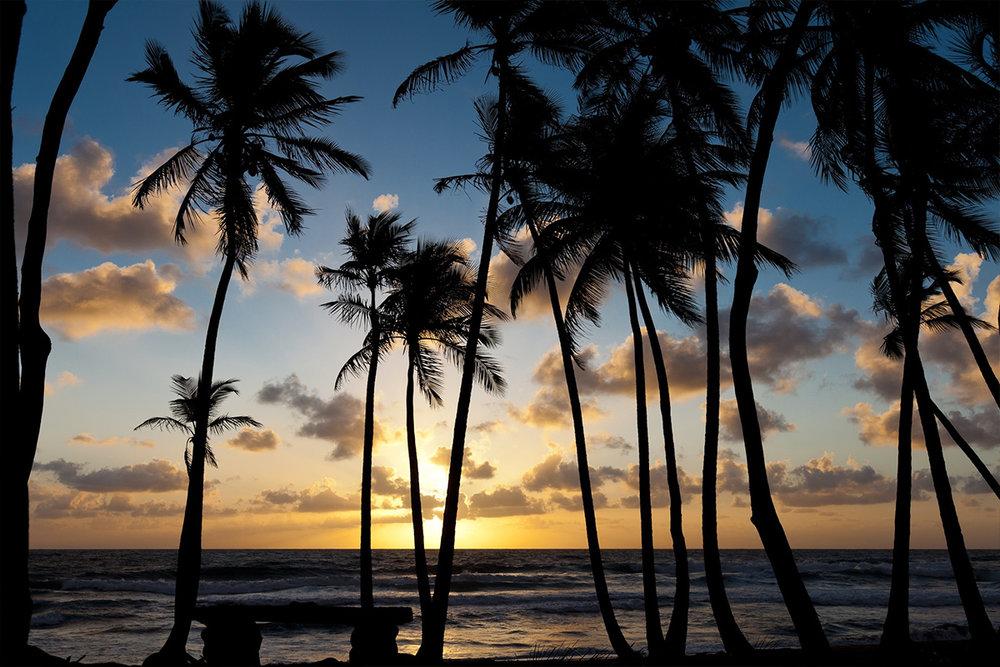 Rosalie Bay sunrise.jpg