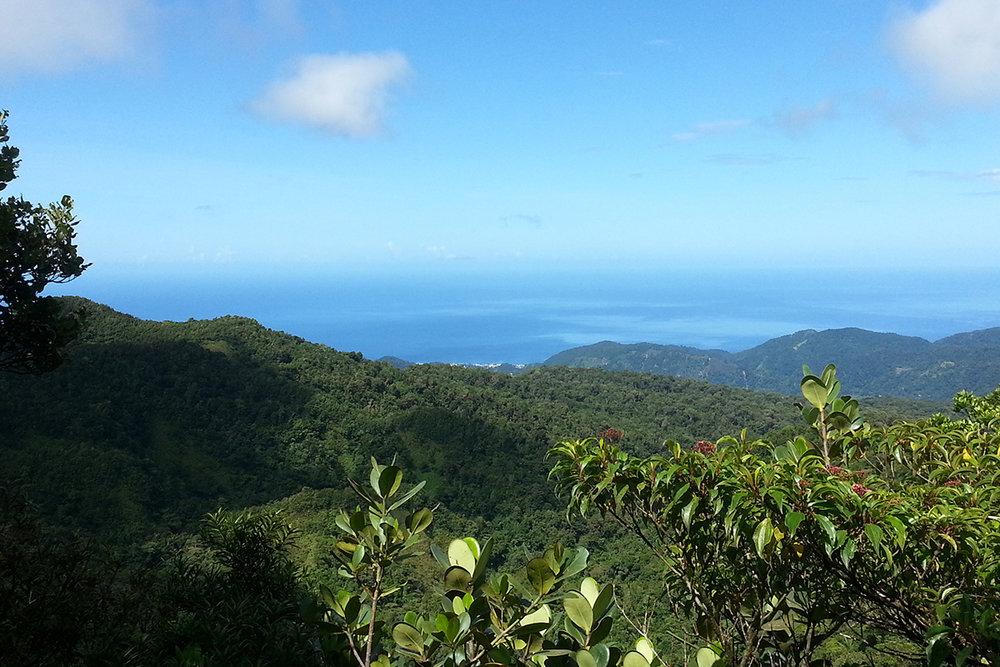 Dominica_boiling-lake-view.jpg