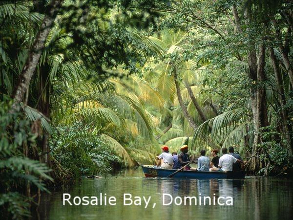 Dominica Photo.jpg