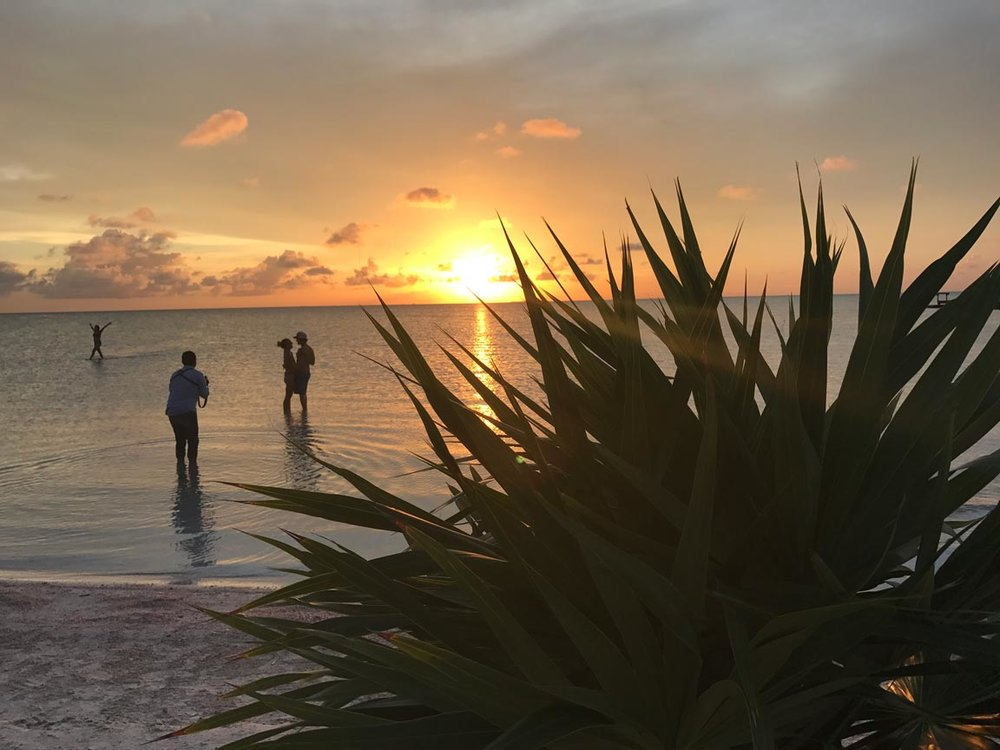 WEB_Beach-Club-SUNSET.jpg
