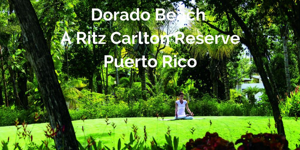 Dorado Beach Banner.png