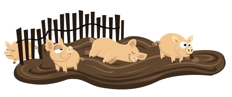 PIGS. Client: WEDGEKASE GAMES. Vector. 2010.