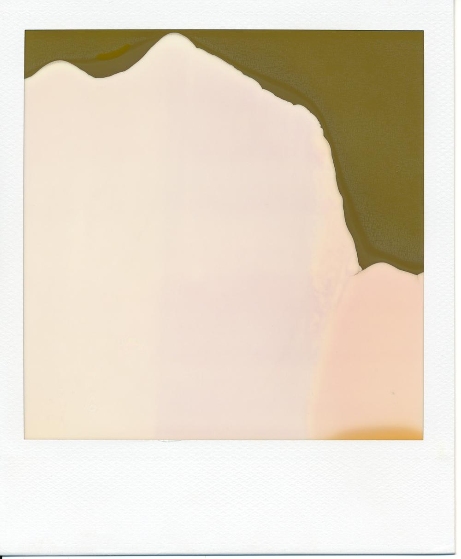 Polaroid (7)final.jpg